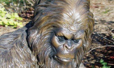 Bigfoot Is Missing! Sasquatch Statues Vanish From Ohio Store