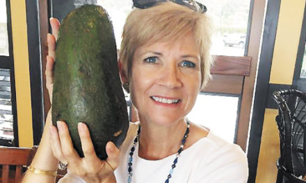 Guinness World Records Says Yes, This The Biggest Avocado
