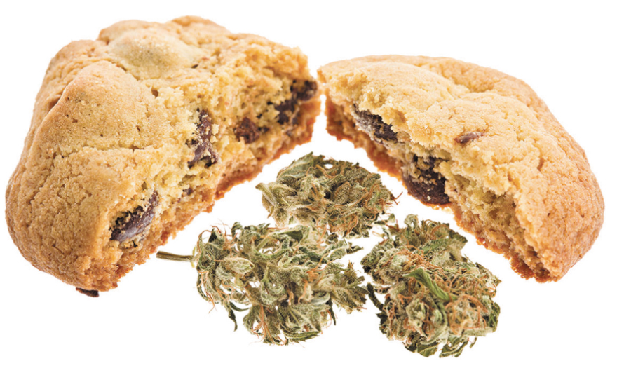 Maine Day Care Says Cookies Made Their Workers High
