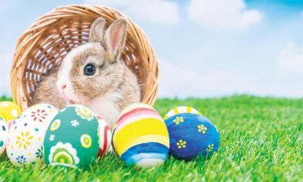 Easter Egg Hunt On Dallas Court Square, Saturday, March 24, 1-4pm