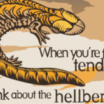 Critters On Condoms Urge Users To Think About Their Actions