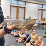 Catawba County Library Summer Learning Activities For Kids Kicks Off This Month!