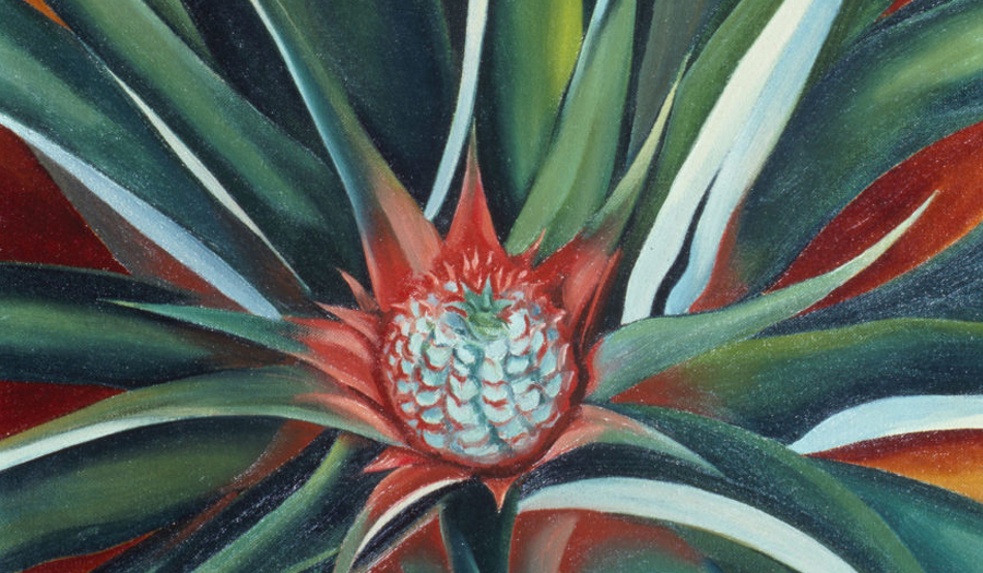 NY Botanical Garden To Feature O'Keeffe's Hawaii Paintings