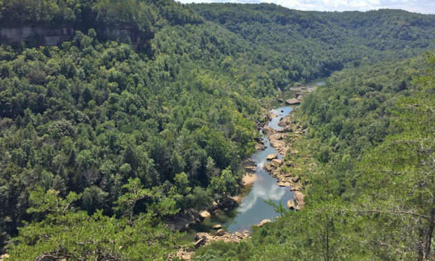 Daniel Boone Forest In KY Yields Astonishing 9,000 Year Old Find