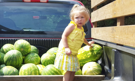 Catawba Co. Public Health's Farmers Market Opens June 7