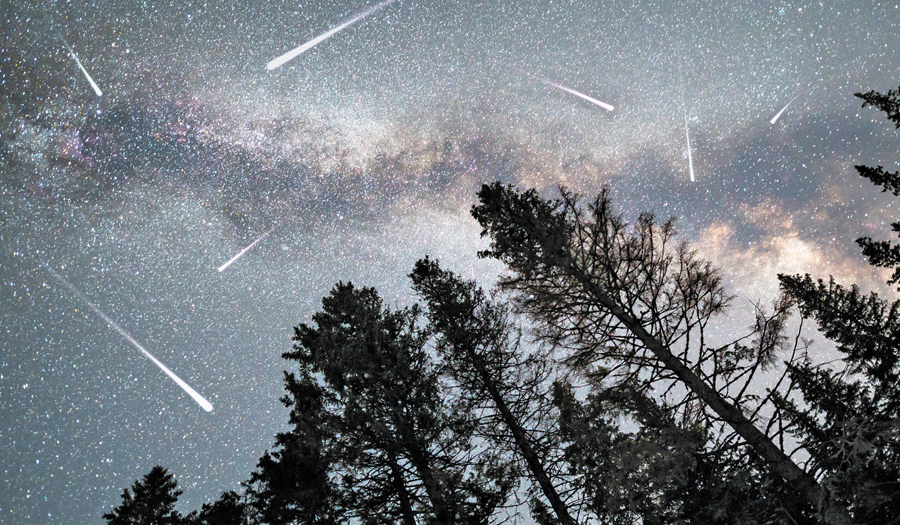 PARI Hosts Their First Perseids Meteor Shower Event, August 11