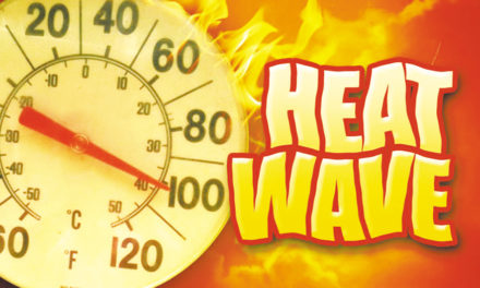 Alert! City Officials Urge A Break From Sex To Fight Heat Wave
