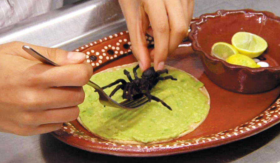 Mexico City Restaurant Busted Over Protected Tarantula Tacos