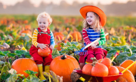Boger City UMC's Annual BBQ And Pumpkin Patch Is Sat., Oct. 6