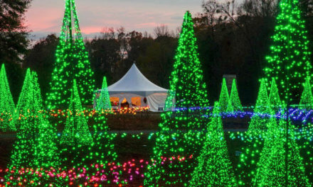 Holidays At The Garden At Stowe Botanical Garden, Through 1/6/19