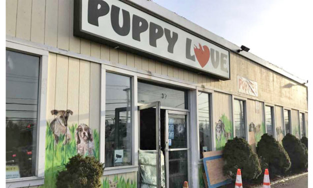 Firefighters & Civilians Rescue 86 Puppies From Pet Shop – Yay!