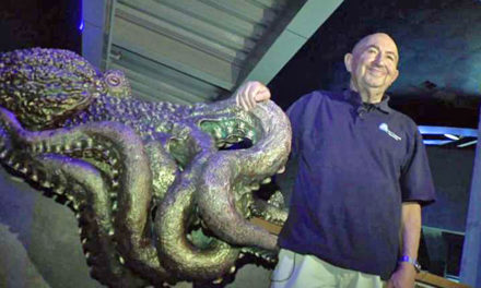 Octopus Whisperer At Boston Aquarium Has A Special Gift
