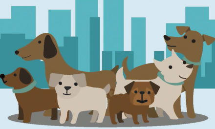 Rabies Clinic To Be Held At The Hickory Police Dept., March 24