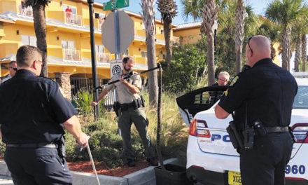 Police Hold Rattlesnake In Trunk For Safe Keeping