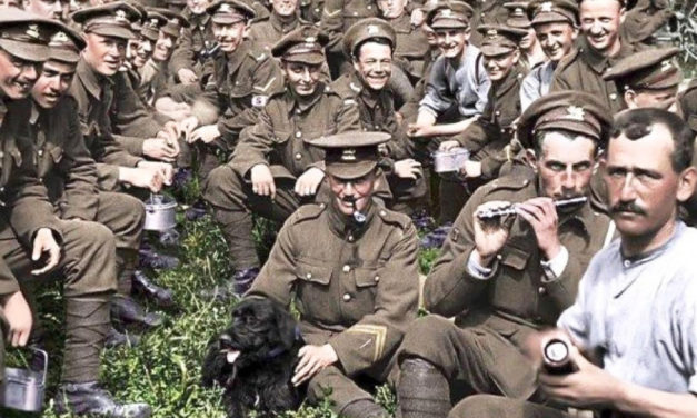 They Shall Not Grow Old (***) R