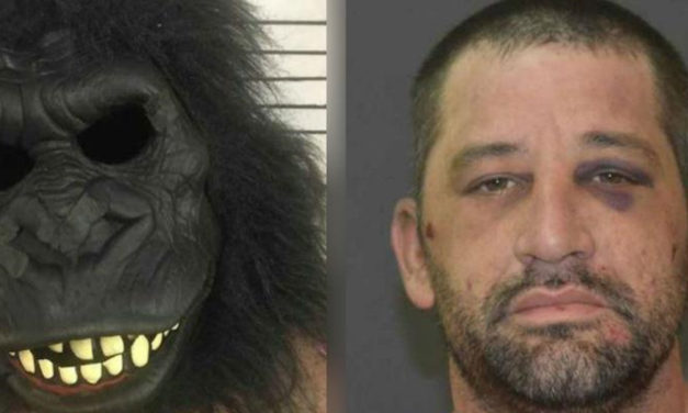 Man In Gorilla Suit Breaks In And Hides Under The Bed