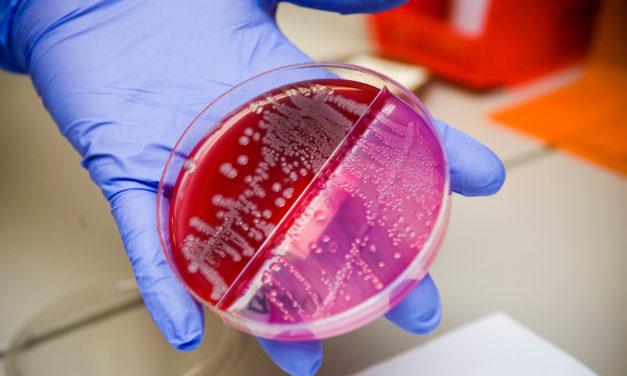 The New Germ Warfare: When Antibiotics Fail, It's Germ vs. Germ