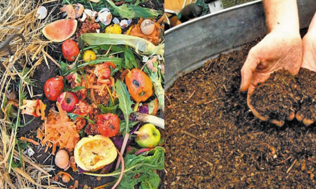 Soil, Composting, & Fertilizers At Beaver Library, Thurs., March 14