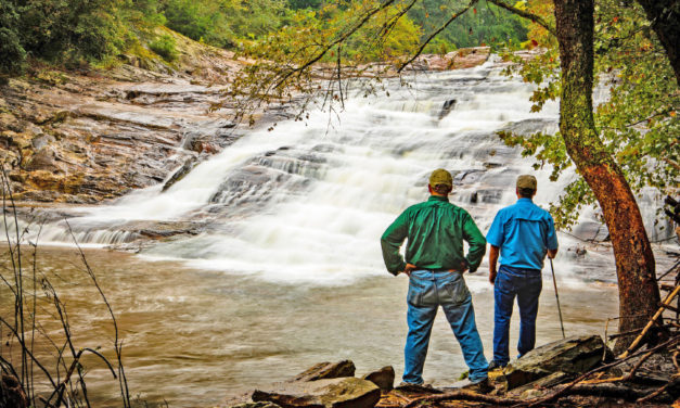 Blaze A Trail To Elkin For NC Trails Days Festival, May 31 – June 2