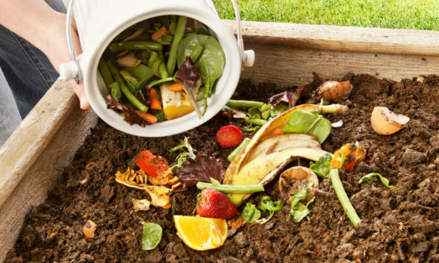 Learn The Ins And Outs Of Composting, May 29, In Newton