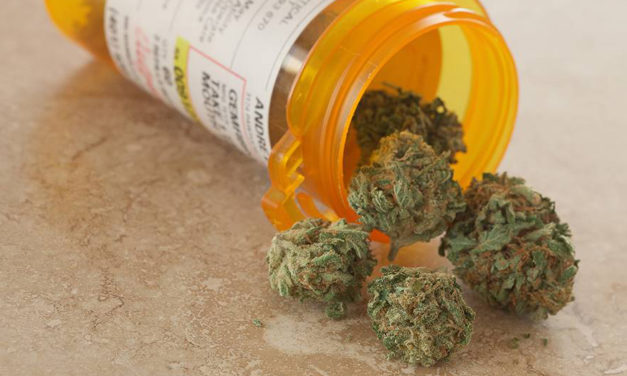 Medical Marijuana Offers Hope While Science Plays Catch Up