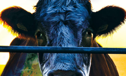 Cowspiracy: The Sustainability Secret, Oct. 7, At AMC Hickory