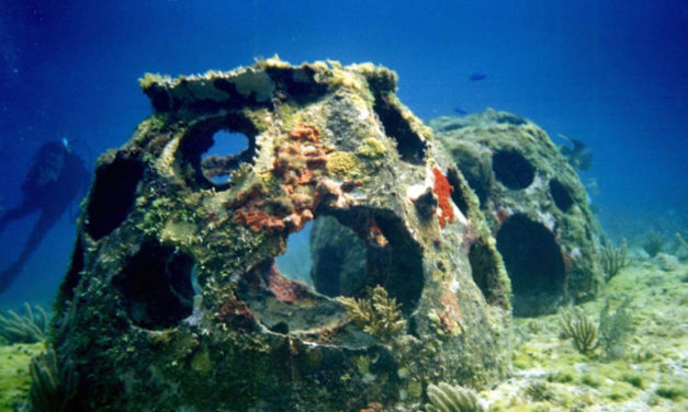 Cremated Remains Turned  Into Habitat For Marine Life