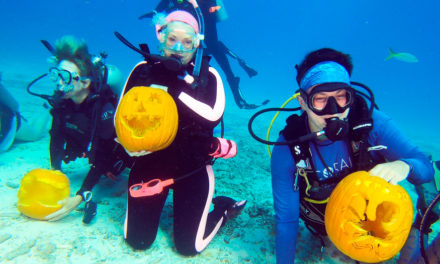 Pumpkin Carving Under The SeaPumpkin Carving Under The Sea