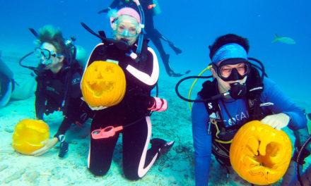 Pumpkin Carving Under The SeaPumpkin Carving Under The Sea
