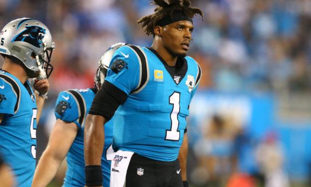 Panthers Rebound