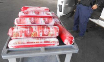 Border Agents Seize 154 Pounds Of Bologna At Crossing