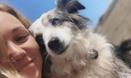 Woman Offers $7K Reward  For Return Of Lost Dog