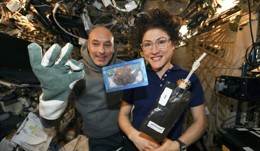 Space-baked Cookies & Mighty Mice Back On Earth Via SpaceX