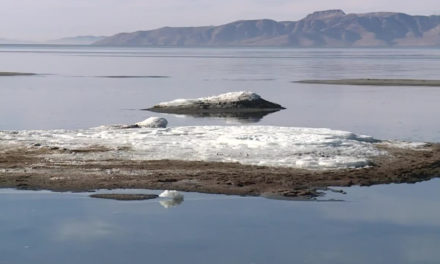 Rare Salt Formations Appear At The Great Salt Lake