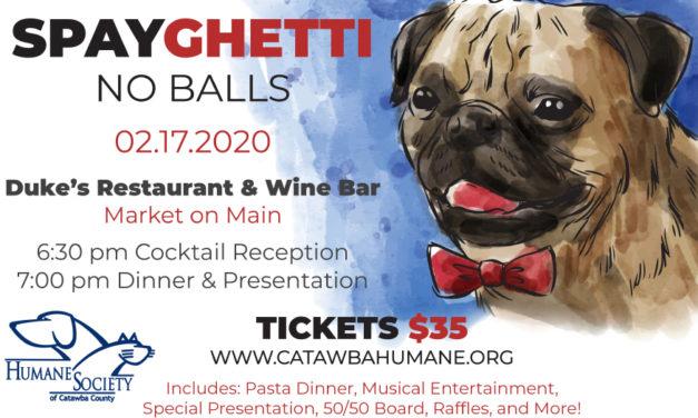 Humane Society's Annual Spayghetti Fundraiser Is Feb. 17