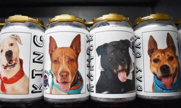 Woman Sees Missing Dog On Beer Cans Promoting Shelter Dogs