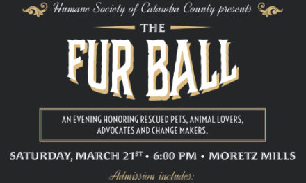Tickets On Sale Now For HSCC's Inaugural Fur Ball On March 21
