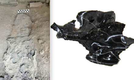 Mount Vesuvius Blast Turned Ancient Victim's Brain To Glass