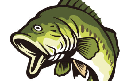 Long View Lions Club Hosts 10th Annual Team Bass Fishing Tournament 3/28, Enter By 3/21