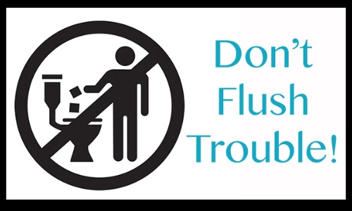 City Of Newton Urges Residents To Stop Flushing TP Alternatives