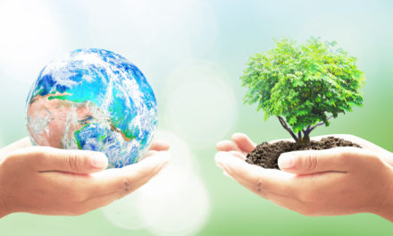 Earth Turns Wilder And Cleaner With People At Home
