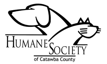 HSCC Will Start Accepting Owner Surrender Animals On 7/1