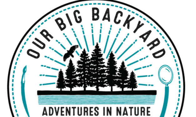 Foothills Conservancy Of NC To Hold Annual Our Big Backyard Summer Camp Virtually, July