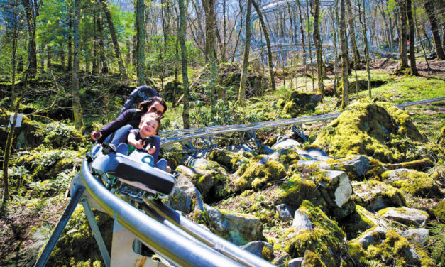 North Carolina's First Alpine Coaster Opens In Banner Elk