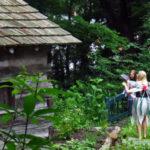 Annual Fairy Day In The Gardens At Daniel Boone Gardens, 7/11