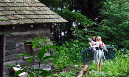 Annual Fairy Day In The Gardens At Daniel Boone Gardens, 7/11
