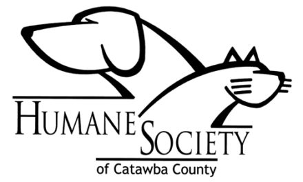 Senior Dogs At Catawba  Humane Society Fetch Grant