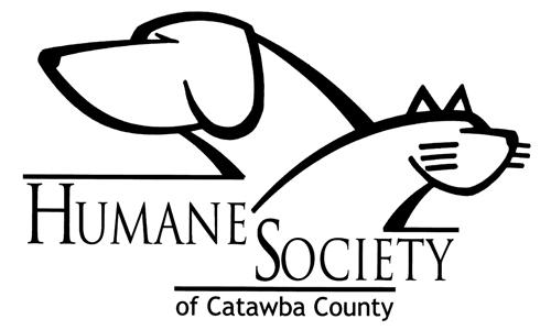 Senior Dogs At Catawba  Humane Society Fetch Grant