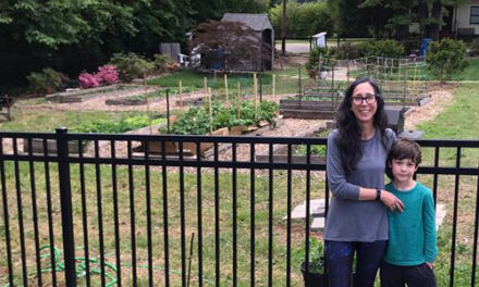Library's Community Garden Feeds And Engages Public