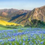 California Indian Tribe Gets Back Big Sur Ancestral Lands